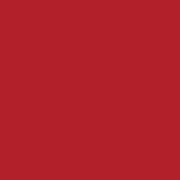 颜料红色浆269号